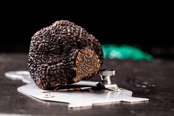 black-truffle-urban-flavours