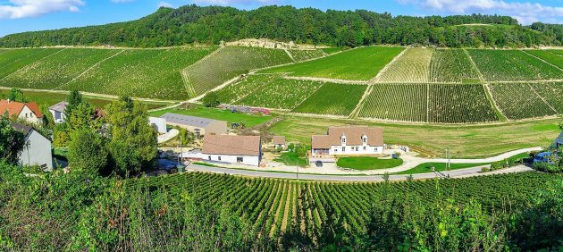 Panoramic view of countryside and vineyards in Chablis area Burgundy France