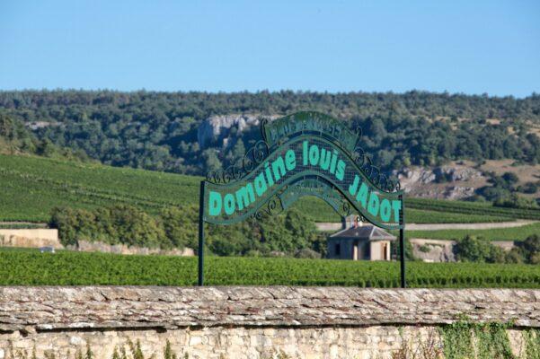 Clos+Vougeot-darren-gall-burgundy-urban-flavours